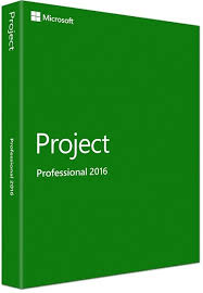 Project Pro 2016 DVD - FPP - Last Stock